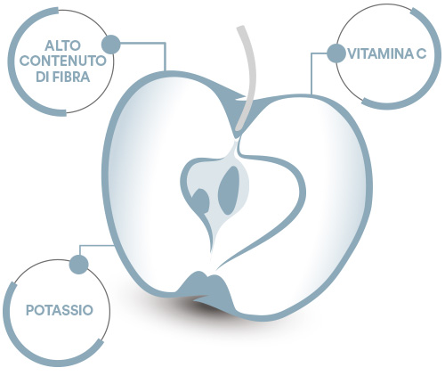 OrtoQui - Mela Gala composizione