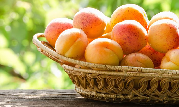 OrtoQui - prodotti luglio - albicocche